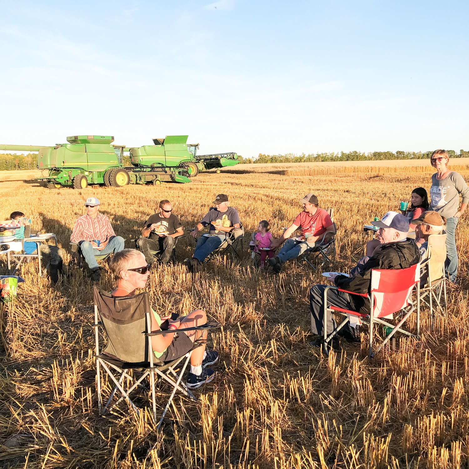 Farming on Creek Edge Land and Cattle